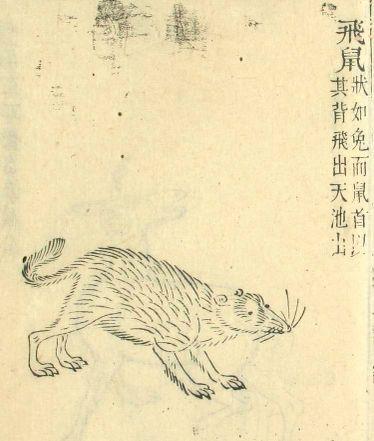 Hisosengaikyou